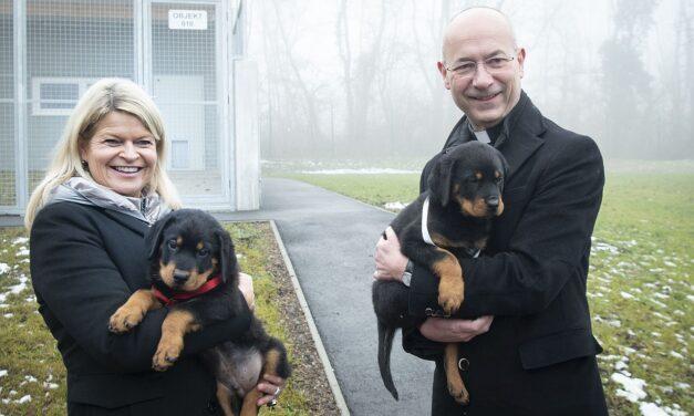 Neues Welpenhaus für Hundenachwuchs beim Bundesheer