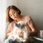 Wiener Wuffinar: Tierschutzombudsstelle lädt zum kostenlosen Kompaktkurs für Hundefreunde